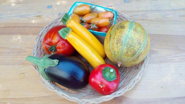 panier de légumes de porquerolles
